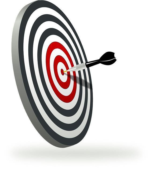 Que es publico Objetio Target